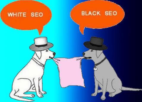 白帽SEO技术怎么做?